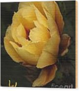 Study In Yellow Wood Print