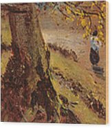 Study Of Tree Trunks Wood Print