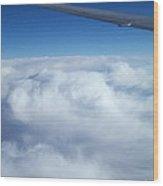 Sublime Flight Wood Print