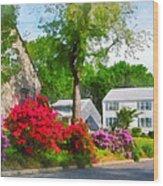 Suburban Azalea Garden Wood Print