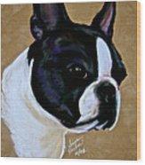 Suede's Grandson Wood Print