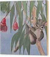Sugar Glider Wood Print