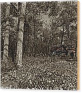 Sugar Shack In Sepia Wood Print