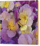 Sugared Pansies Wood Print