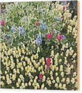 Summer Alpine Flowers Wood Print