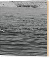 Summer At Lake Mead Wood Print