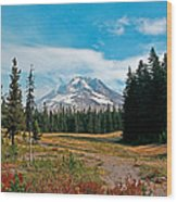Summer At Mt. Hood In Oregon Wood Print
