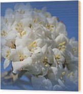 Summer Bunches Wood Print