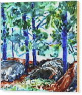 Summer By The Lake Wood Print