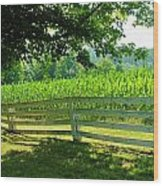 Summer Corn Wood Print