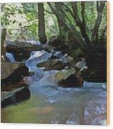 Summer Creek Wood Print