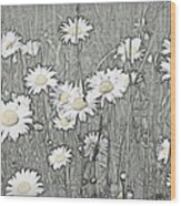 Summer Daisies Wood Print