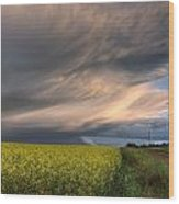 Summer Evening Storm Blowing Over Ripe Wood Print by Dan Jurak