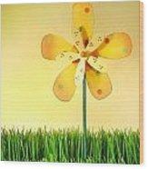 Summer Fun In The Grass Wood Print by Sandra Cunningham