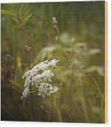 Summer Grasses Wood Print