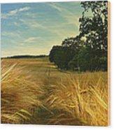 Summer Harvest Wood Print