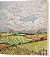Summer Harvest Wood Print by Marilyn Smith