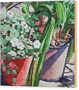 Summer Impatiens Wood Print by Peter Sit