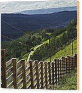 Summer In Vail - Colorado Wood Print