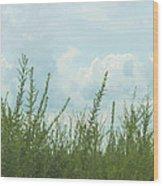 Summer In Watercolor Wood Print