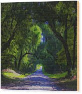 Summer Lane Wood Print