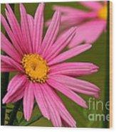 Summer Pink Wood Print