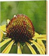 Summer Pins Wood Print