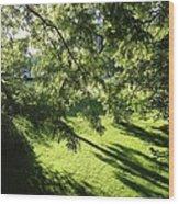 Summer Shade Wood Print