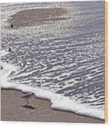 Summer Shimmer Wood Print by Cindy Lee Longhini