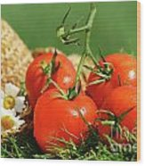 Summer Tomatoes Wood Print by Sandra Cunningham