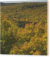 Summit Peak Autumn 10 Wood Print