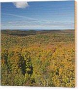 Summit Peak Autumn 11 Wood Print