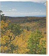 Summit Peak Autumn 16 Wood Print