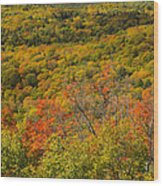 Summit Peak Autumn 6 Wood Print