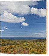 Summit Peak Autumn 8 Wood Print