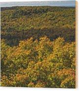 Summit Peak Autumn 9 Wood Print