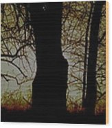 Sun - Sunrise - Breaking Dawn Wood Print