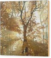 Sun Breaking Through Trees Wood Print