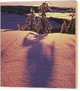 Sun Casting Shadows On Snow Covered Wood Print