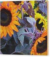 Sun Flower Sunday Wood Print