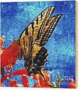 Sun Lit Eastern Tiger Swallowtail Wood Print