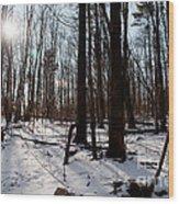 Sun On The Wild Turkey Trail Wood Print