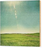 Sun Over Field Wood Print
