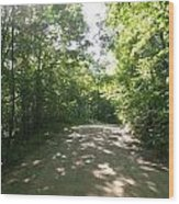 Sun Speckled Dirt Road Wood Print