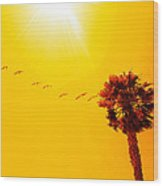 Sunbound Wood Print