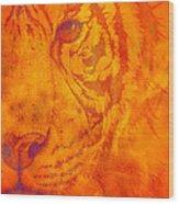 Sunburst Tiger On Fire Wood Print