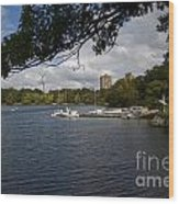 Jamaica Pond Sailing Wood Print