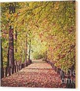 Sunday Stroll Wood Print
