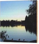 Sundown At Lost Lagoon Wood Print