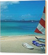 Sunfish On The Beach Wood Print